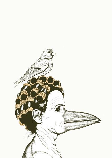 birdladywebb
