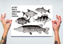 artprint fisk